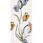 Alacia Tulip